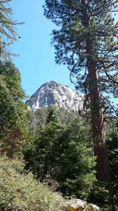 Tahquitz Lily Rock